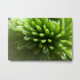 The Spikes Metal Print