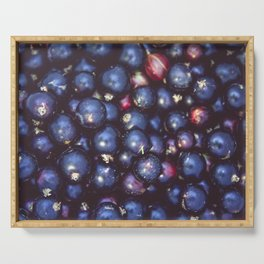 Background of black currants. Fresh berries closeup. Serving Tray