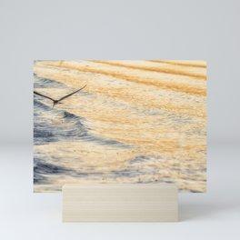 Black Skimmer Skimming Mini Art Print
