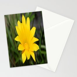 Bright Yellow Gazania Flower Stationery Cards