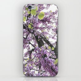 autum iPhone Skin