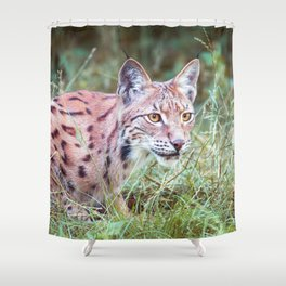 Lynx in the grass Shower Curtain