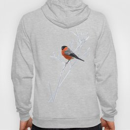 Safe transitions! // (polygonal bull-finch) Hoody