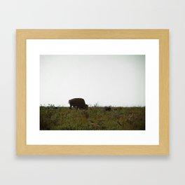 Wildlife Refuge Framed Art Print