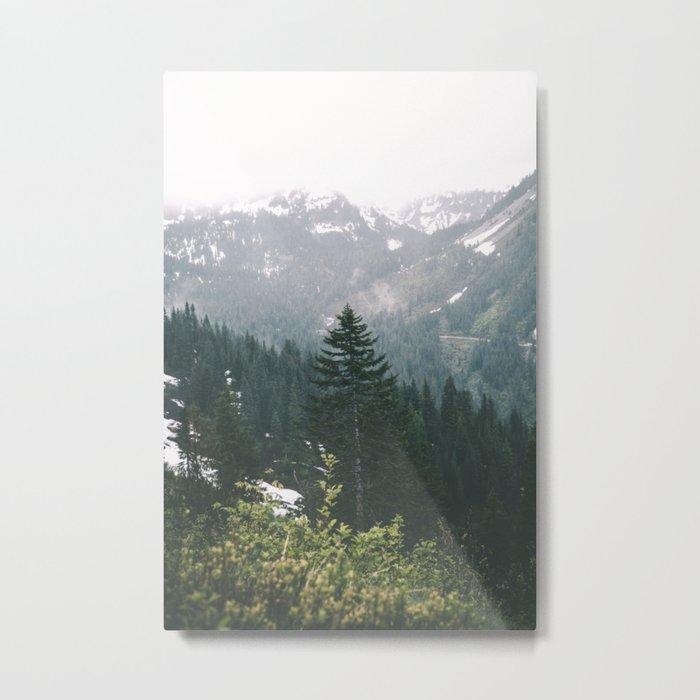 Washington V Metal Print