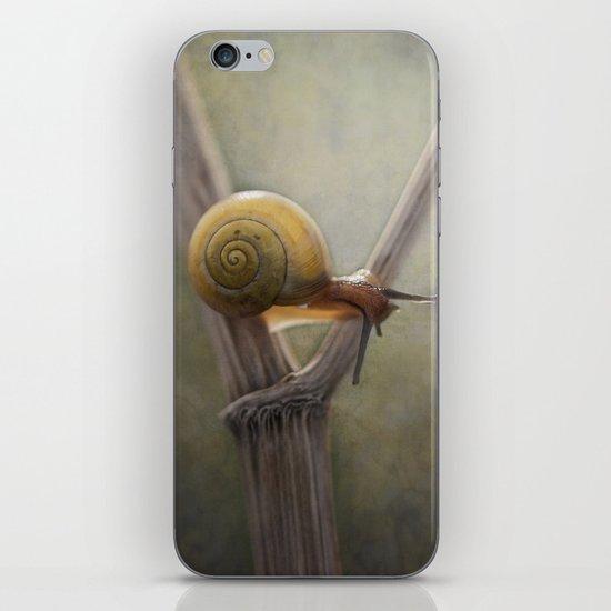 ' Y ' iPhone & iPod Skin