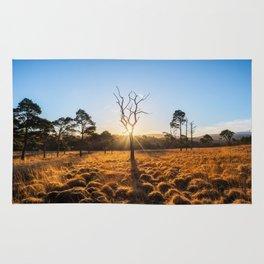 Coronation Plantation - Ireland (RR220) Rug