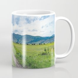 Alpine steppe in the background of snowy mountains Coffee Mug