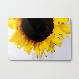 sun-flower Metal Print