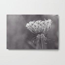Queen of the Wildflowers Metal Print