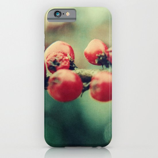 Red Winter Berries iPhone & iPod Case