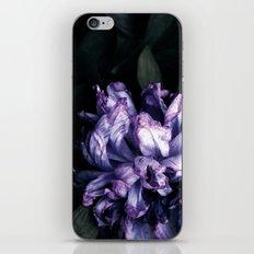 the purple lady iPhone & iPod Skin