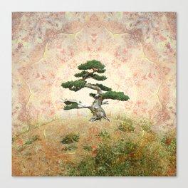 Bansai Canvas Print