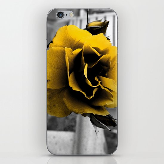 Curse of the Golden Flower iPhone & iPod Skin
