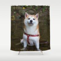 shiba Shower Curtains featuring KUMA: Shiba In River 1 by enyen