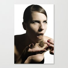 Hair balls Canvas Print