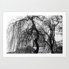 Into the trees 09 Art Print