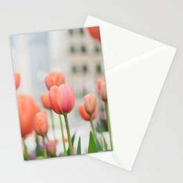 Tulips on Michigan Avenue - Chicago Photography Stationery Cards