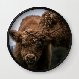 Scottish Highland Cattle Calves - Babies playing Wall Clock