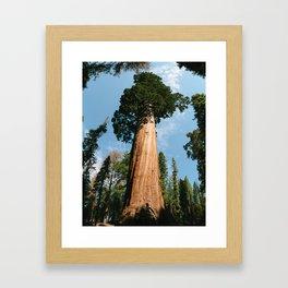 General Sherman Tree Framed Art Print