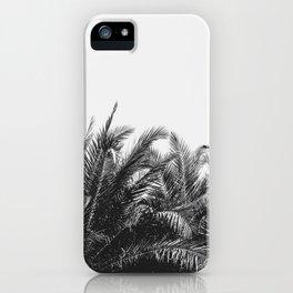Palm Breeze iPhone Case