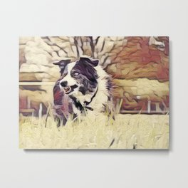 Collie In Weathered Metal Print