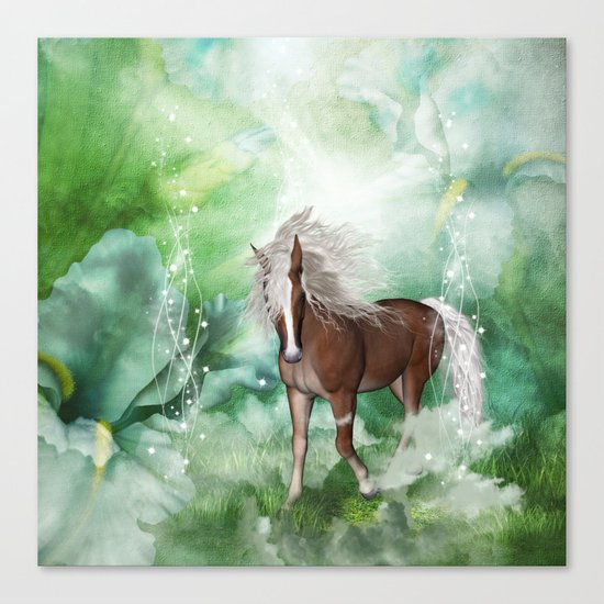 Beautiful horse Canvas Print