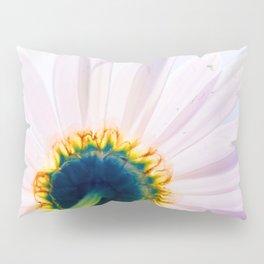 Blooming Daisy Pillow Sham