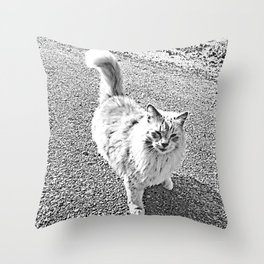Sandy in high contrast Throw Pillow