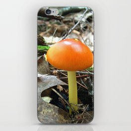 Mushroom P iPhone Skin