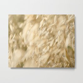 Soft Golden Field 2 Metal Print
