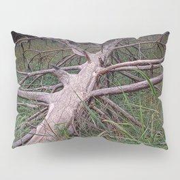 Fallen Pine Tree at Ludington State Park, Michigan Pillow Sham