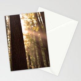 Sunbeams Through Redwoods - San Francisco, California Stationery Cards
