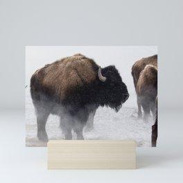 Yellowstone National Park - Bison Herd Mini Art Print