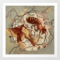 birds Art Prints featuring Honey & Sorrow (grey) by Teagan White