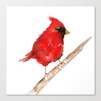 craftberrybush Canvas Prints featuring Red cardinal  by craftberrybush