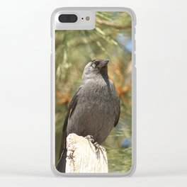 Black Crow Close Up Clear iPhone Case