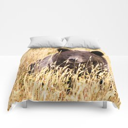 Grizzly Comforters