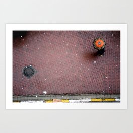orange flake Art Print