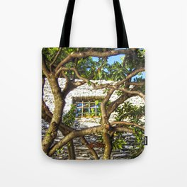 Finestra a Nervi Tote Bag