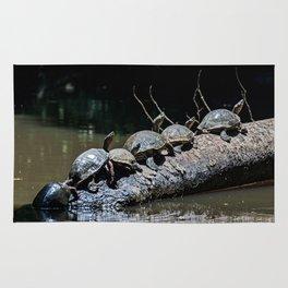 Turtles at Tortuguero NP - Costa Rica Rug