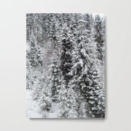 Travel to the ski resort of Zakopane in Poland Metal Print