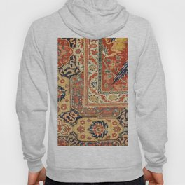 Indian Trellis II // 17th Century Ornate Medallion Red Blue Green Flowers Leaf Colorful Rug Pattern Hoody