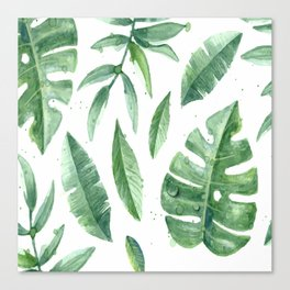 Leaves of the tropics Canvas Print