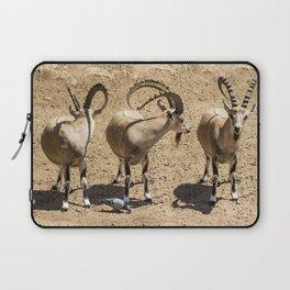 Mountain goat - Trio Laptop Sleeve