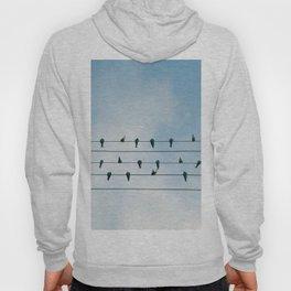 Birds on a wire Hoody
