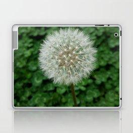 Make a wish... Laptop & iPad Skin
