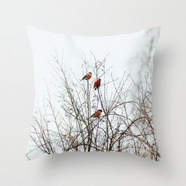 Bullfinches in bush Throw Pillow