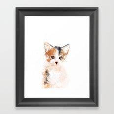 Baby Cat, Mio Framed Art Print