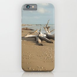 Natural reserve, south of Sicily iPhone Case